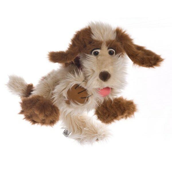Hond Tillman